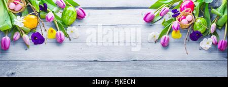 Fondo de Pascua, flores de primavera y los huevos de pascua en madera, banner