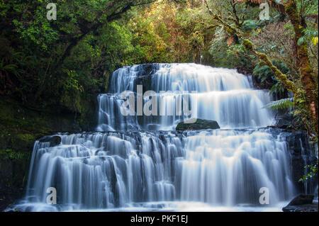 Purakaunui Falls, Los Catlins, la Región de Otago, Nueva Zelanda. Majestic, multi-tiered cae rodeado por la selva antecedentes