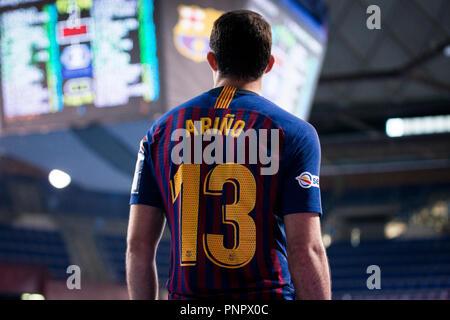 Barcelona, España. 22 de septiembre de 2018. La Liga de Campeones de EHF balonmano Velux, FC Barcelona versus Lassa Telekom Veszprem HC; Aitor Arino del FC Barcelona: Crédito Lassa UKKO Images/Alamy Live News