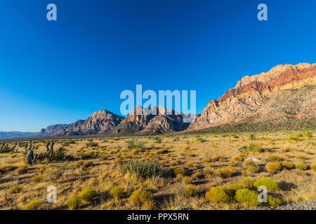 El Red Rock Canyon justo al oeste de Las Vegas, Nevada, EE.UU.