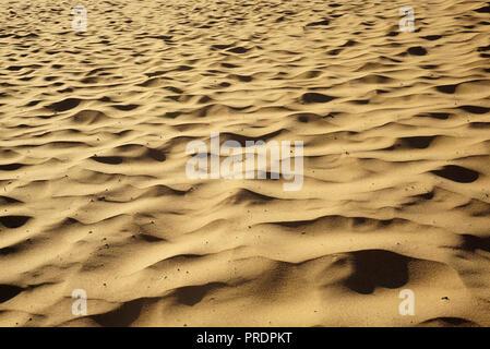 Playa de arena del lago Michigan con olas. Dunas de arena en la orilla. Más arriba Foto de stock