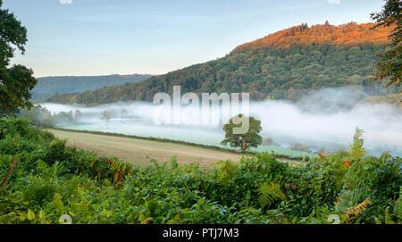 En la parte inferior del puente Bigsweir Wye valle rodeado por la niebla de la mañana.