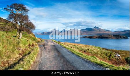 Una sola pista camino serpentea su camino pasado un solitario árbol junto a Loch Na Keal y la diminuta isla de Eorsa en la isla de Mull, en Escocia Foto de stock