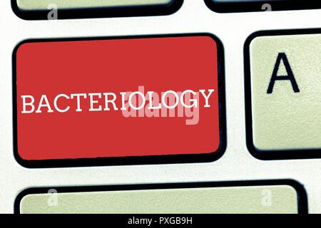 Signo de texto mostrando la bacteriología. Foto conceptual rama de la microbiología relacionados con bacterias y sus usos.