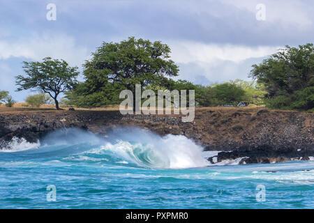 Onda de curling cresterías y arrastrando el rocío del mar, como se rompe cerca de la costa de la costa de Kona en la Gran Isla de Hawaii. Árboles y nubes en el fondo.