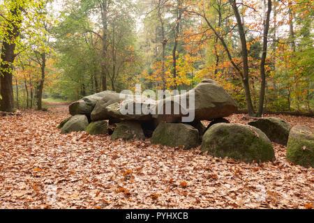 D9 hunebed dolmen en Annen, Drenthe, en el norte de los Países Bajos