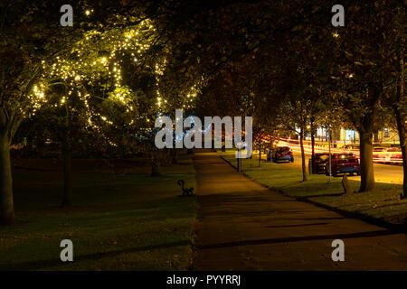 Luces decorativas brillantes amarillas colgando de un árbol a lo largo de un camino en la colina de Montpellier, Harrogate, Yorkshire del Norte, Inglaterra, Reino Unido.