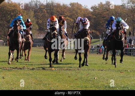 En Magdeburgo, Alemania. 31 Oct, 2018. La última carrera de caballos que tiene lugar este año en el hipódromo en el Herrenkrug Park. El día de la raza de la familia atrae a miles de visitantes en tiempo soleado. Crédito: Peter Gercke/dpa-Zentralbild/ZB/dpa/Alamy Live News