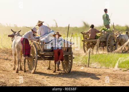BAGAN, Myanmar, 21 de enero de 2015 : los agricultores birmanos conducir una carreta de descarga están llegando a un barco de alimentos y materiales a lo largo del río Irrawaddy ne