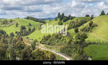 Una vía férrea serpenteante a través de verdes paisajes vistos desde el mirador Piriaka, Nueva Zelanda