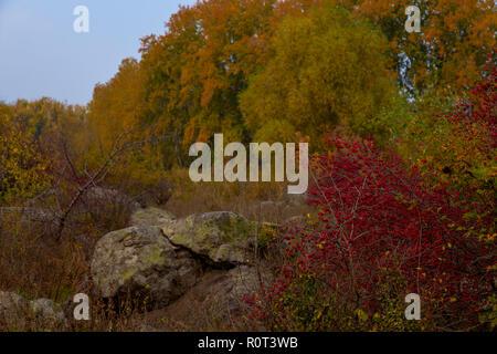 Otoño los árboles en la orilla rocosa del río Foto de stock
