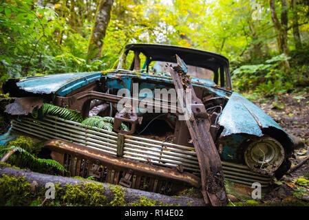 Rusty olvidado coche viejo en el bosque