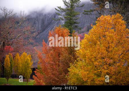 Vibrantes colores de otoño contra una roca montaña con nubes de baja altura en el valle solitario en cajeros, Carolina del Norte. (Ee.Uu.)