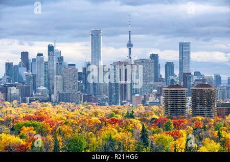 Otoño de Toronto skyline incluyendo grandes downtown y midtown landmark edificios con colores de otoño en el árbol de primer plano