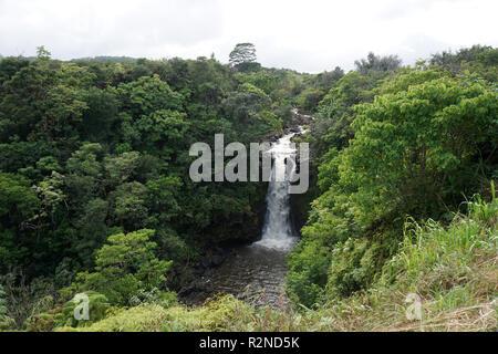 La Kamaee cae en la isla de Hawai (Isla Grande)