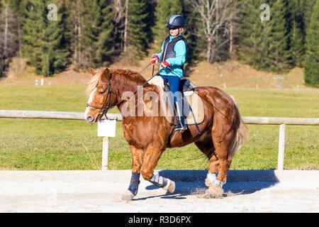 En el camino con el caballo