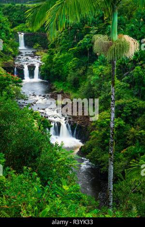 Umauma Falls, a lo largo de la exuberante costa Hamakua, Big Island, Hawaii, EE.UU.