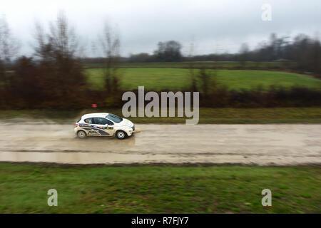 Sveta Nedjelja, Croacia - El 25 de noviembre de 2018. 9º Rally Show Santa Domenica. Y Peter Hanell Wladica Rabrenovic desde Suecia Racing en el Peugeot 208