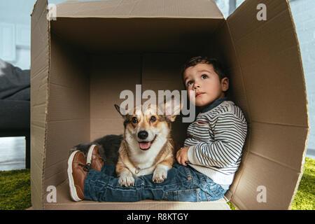 El enfoque selectivo de Welsh Corgi pembroke sentado con Little Boy en caja de cartón