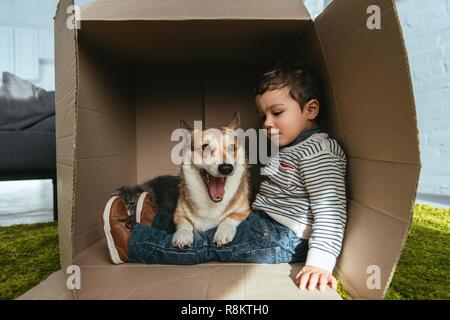 Cute Welsh Corgi pembroke sentado con Little Boy en caja de cartón