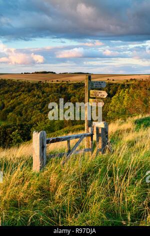 Madera (Cleveland fingerpost camino Sendero Nacional) en la hermosa colina soleada ubicación con el paisaje más allá - Banco Sutton, Yorkshire, Inglaterra.