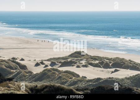 Punto de vista de un grupo de jinetes con sus caballos y una bandada de pájaros en la distancia en una playa cerca de una curva de la carretera 101, frente a la costa de Oregón, EE.UU.