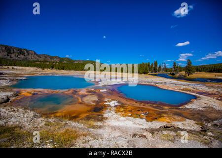 Grand Prismstic Primavera, el Parque Nacional de Yellowstone, Sitio del Patrimonio Mundial de la UNESCO, Wyoming, Estados Unidos de América, América del Norte