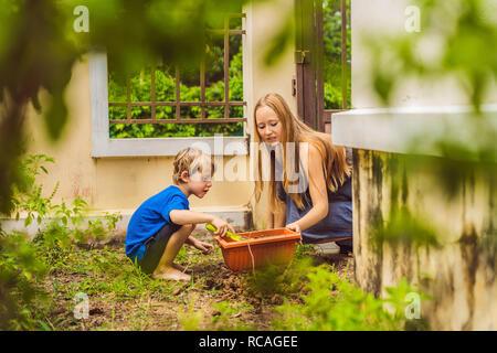Hermosa joven y su lindo hijo sembrando plántulas en cama en el jardín interno en el día de verano. Herramientas de jardinería, guantes y regadera al aire libre. Actividad de jardinería con chico y familia