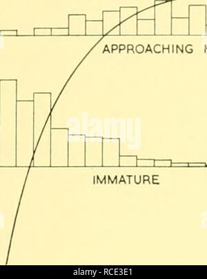 . Informes de descubrimiento. Discovery (Barco); expediciones científicas; océano; la Antártida; Islas Malvinas. Acumulación de corpora hasta alcanzar la madurez física 391 en la superposición hay 31 hembras maduras físicamente con 14 corpora o menos y 23 hembras inmaduras corpora con 15 o más. Considerando estos 54 individuos como una distribución de frecuencia normal con un valor promedio correspondiente al número promedio de corpora en el umbral de la madurez física, las juntas 70 z de próximo vencimiento. HTm 10 20 25 Número de corpora 40 Text-Fig. 25. Curva suavizada mostrando aumento en la longitud del cuerpo con