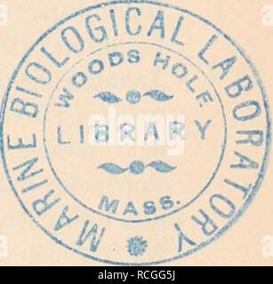 """. Die Protozoen als Krankheitserreger des Menschen und der Hausthiere; für Ärzte und Zoologen Thierärzte,,. Rhizopodeii. - Amöben. 9: Gregarinidae Unterordnung Coccididae Haemosporidae Gymnosporidae. b)-dnung Dolychocystida Unteroi: Sarcosporidae. 2. Unterklasse: Amoebogenia. Ordnungen: Nematocystida. Unterordnung: Myxosporidae. III Klasse: F 1 a g e 11. 1. Unterklasse: Euflagelliae. Ordnungen: Monadida, Euglenida, Pliyto- flagelida. 2. , Silicofiagelliae. 8. ^ Dinoflagelliae. 4. """" Cystoflagelliae. IV, Klasse: ii s i n f o r i a. 1. Unterklasse: Ciliae. 2. , Tentaculiferiae vel Suctoriae.. Yo"""