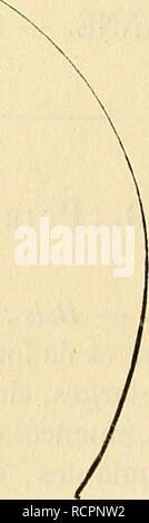 . Dictionnaire de pomologie : contenant l'histoire, la descripción, la figura frutas des anciens et des modernes frutos les plus connus généralement et cultivés. Fruta. . Por favor tenga en cuenta que estas imágenes son extraídas de la página escaneada imágenes que podrían haber sido mejoradas digitalmente para mejorar la legibilidad, la coloración y el aspecto de estas ilustraciones pueden no parecerse perfectamente a la obra original. Leroy, André, de Sceaux. Angers : Chez l'auteur. ..