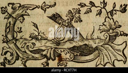 . Der Hausvater ... La agricultura, la economía doméstica; la botánica; Agricultura; Ciencia; Plantas. SSovrete.. Por favor tenga en cuenta que estas imágenes son extraídas de la página escaneada imágenes que podrían haber sido mejoradas digitalmente para mejorar la legibilidad, la coloración y el aspecto de estas ilustraciones pueden no parecerse perfectamente a la obra original. Münchhausen, Otto, Freiherr von, 1716-1774. Hannover, Försters und Sohns Erben