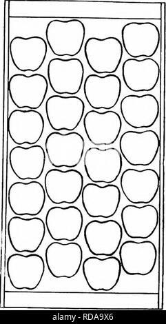 . Insectos perjudiciales : cómo reconocer y controlarlos . Las pestes del insecto; plagas de insectos. . Por favor tenga en cuenta que estas imágenes son extraídas de la página escaneada imágenes que podrían haber sido mejoradas digitalmente para mejorar la legibilidad, la coloración y el aspecto de estas ilustraciones pueden no parecerse perfectamente a la obra original. O'Kane, Walter Collins, b. 1877. Nueva York: Macmillan Company