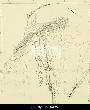 """. La tierra debajo del mar : Historia. En el fondo del océano; geofísica marina. 262 HEEZEN Y MENARD [cap. 12. / ^ > X < O ^^ Q. oo 8 3 cn 2 8 -J § (- LiJ s< , Q: y un. 4 O I- y^ UJ t^ Z / ?^ ^ 3 q:< K- rO V 0 / 1- 1^ o o o o 00 t/) """"0 / /. Por favor tenga en cuenta que estas imágenes son extraídas de la página escaneada imágenes que podrían haber sido mejoradas digitalmente para mejorar la legibilidad, la coloración y el aspecto de estas ilustraciones pueden no parecerse perfectamente a la obra original. Hill, M. N. (Maurice Neville), 1919-. Nueva York : Interscience Pub."""