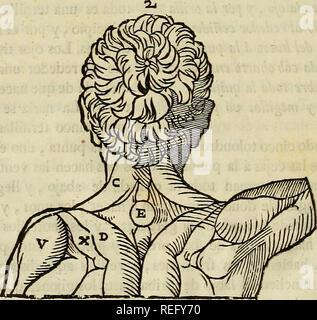 . Varia commensuracion para la escultura y arquitectura. Proporción (arte); dibujo geométrico; Anatomía, artística; Animales; arquitectura. . Por favor tenga en cuenta que estas imágenes son extraídas de la página escaneada imágenes que podrían haber sido mejoradas digitalmente para mejorar la legibilidad, la coloración y el aspecto de estas ilustraciones pueden no parecerse perfectamente a la obra original. Arfe y Villafañe, Juan de, 1535-1603; Enguera, Pedro, d. 1735; Escribano, Miguel. Madrid : En la Imprenta de Miguél Escribano, calle angosta de San Bernardo