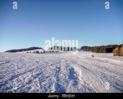 Senderos de esquí nórdico cerca de Nove Mesto na Morave, tierras altas Checo-morava, República Checa Foto de stock