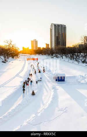 Patinar sobre hielo en el Assiniboine River Trail al atardecer, parte de la Red River Trail mutua, las horquillas, Winnipeg, Manitoba, Canadá.
