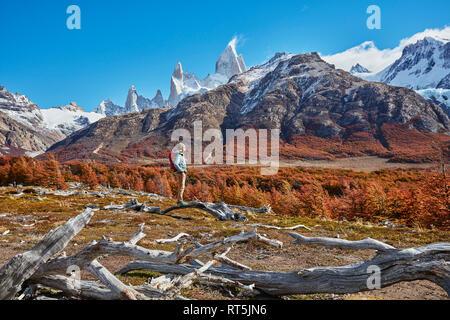 Argentina, Patagonia, El Chaltén, mujer sobre una excursión al Fitz Roy