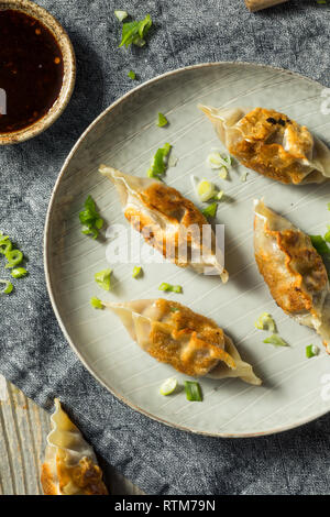 Mandu coreanos caseros listos para comer Dumplings de cerdo