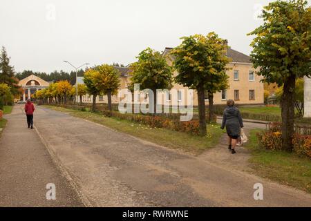 Dos personas caminando por la calle arbolada, vista trasera, Letonia