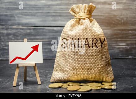 Bolsa con dinero y la palabra salario y flecha arriba y monedas. Aumento de sueldo, salario. La promoción. Crecimiento profesional. Elevar el nivel de vida. Incre