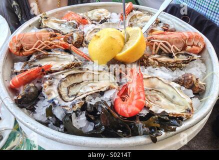 Crustáceos y ostras mariscada en el hielo