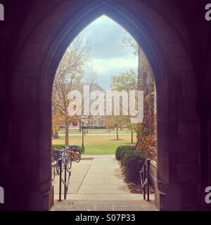 El campus de la Universidad de Chicago en el otoño. Foto de stock