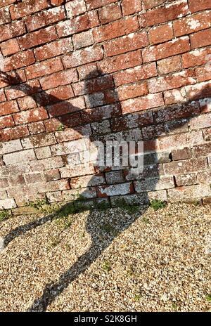 La sombra del niño en una pared y camino de gravilla Foto de stock
