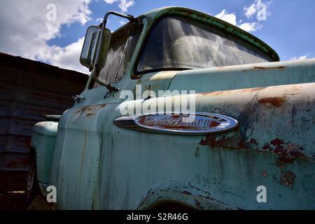 1950 Classic Chevy 3100 carretilla