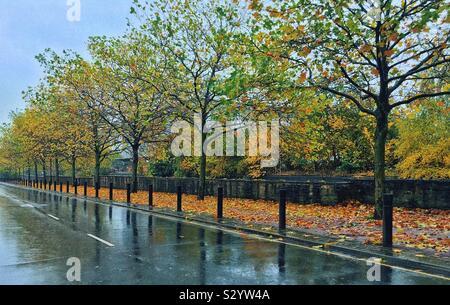 La lluvia en otoño
