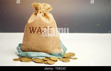 Bolsa de dinero con la palabra salario y cinta métrica. Los recortes salariales. El concepto de beneficio limitado. La falta de dinero y de la pobreza. Los pequeños ingresos. La reducción de los salarios. Onu