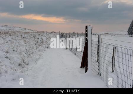 Cubiertas de nieve en la ruta de ubicación rural