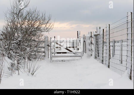 Puerta cubierto de nieve y la ruta de ubicación rural