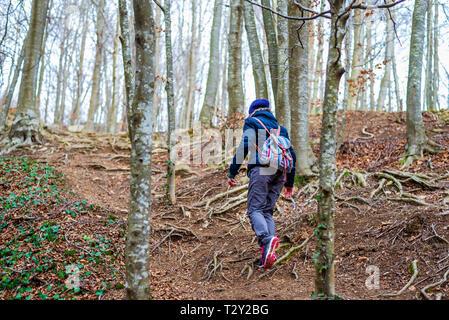 Vista posterior de la mujer caminando en el bosque